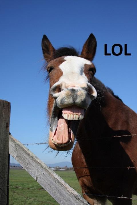 comment faire rire